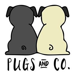 Pugs & Co | www.pugpatrolrescueaustralia.com.au